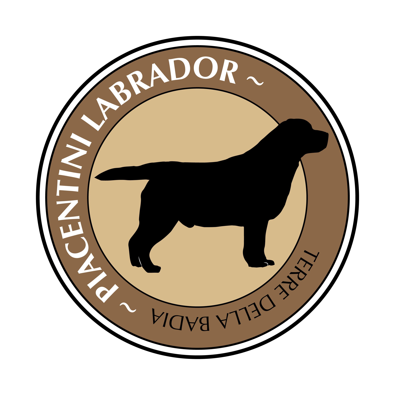 Piacentini Labrador