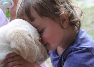 labrador bambini